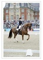muenster_castle_rider